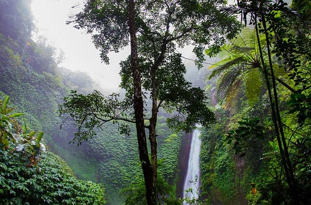 waterfall-384663_640.jpg
